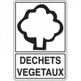 Recyclage Déchets végétaux