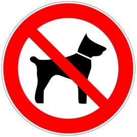 Animaux interdit