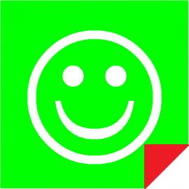 Smiley Vert / Rouge Double Face Magnétique