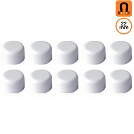 10 aimants blancs - Diamètre 22m