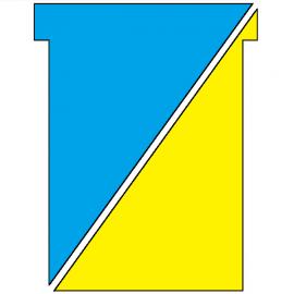 100 fiches en T indice 2 recto/verso Bleu/Jaune , plastifiées