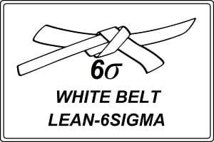 Formation white belt lean management 6-sigma-certifiante-ma-boutique-en-lean